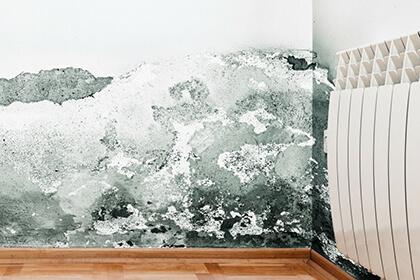 Reparación de humedades y filtraciones